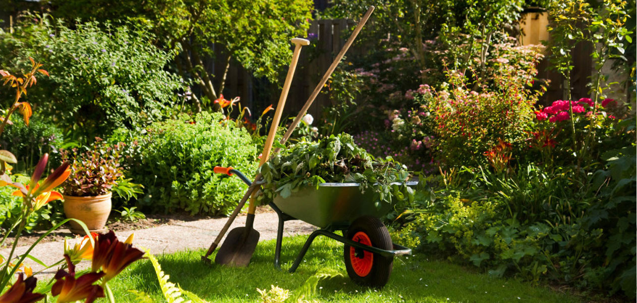 Gardeners Oxford | Gardening Maintenance Services Oxfordshire
